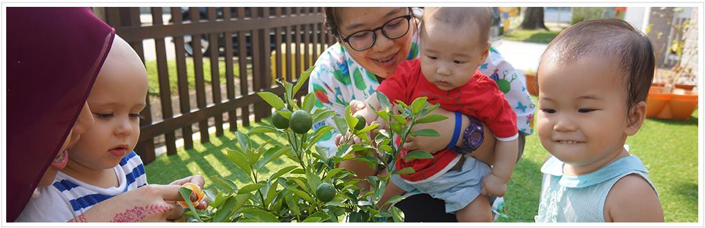 Apollo-Prschool-infant-care-img-1024x332